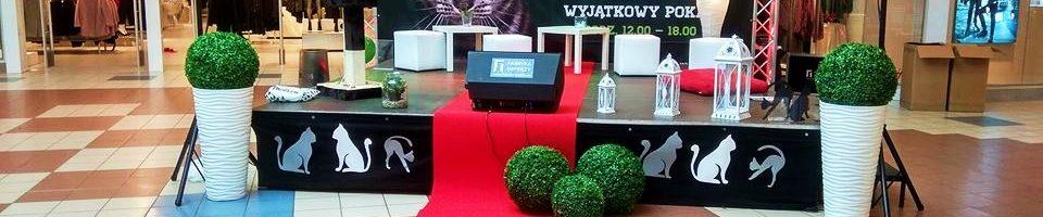 Moda naKoty wCH Osowa - Agencja eventowa Gdańsk