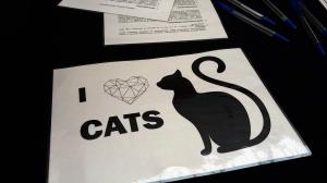 moda na koty (4)